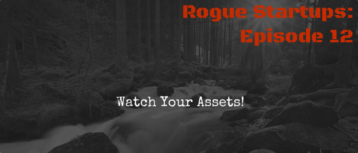 RS012: Watch Your Assets!