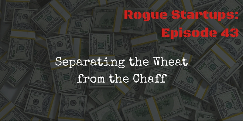 RS043: Separating the Wheat from the Chaff – In Depth Website Due Diligence